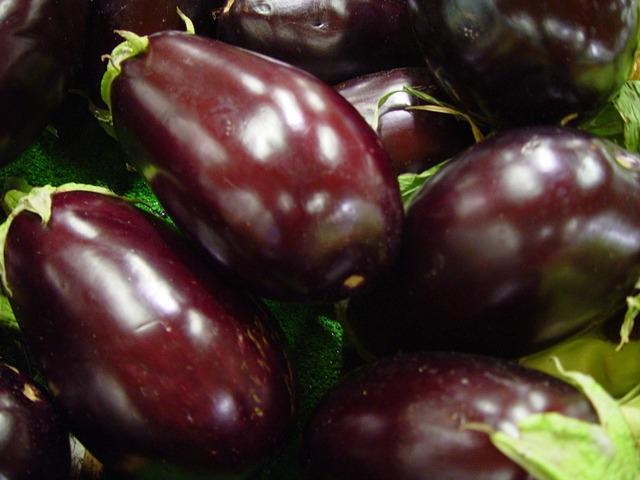 Eggplant with Egg