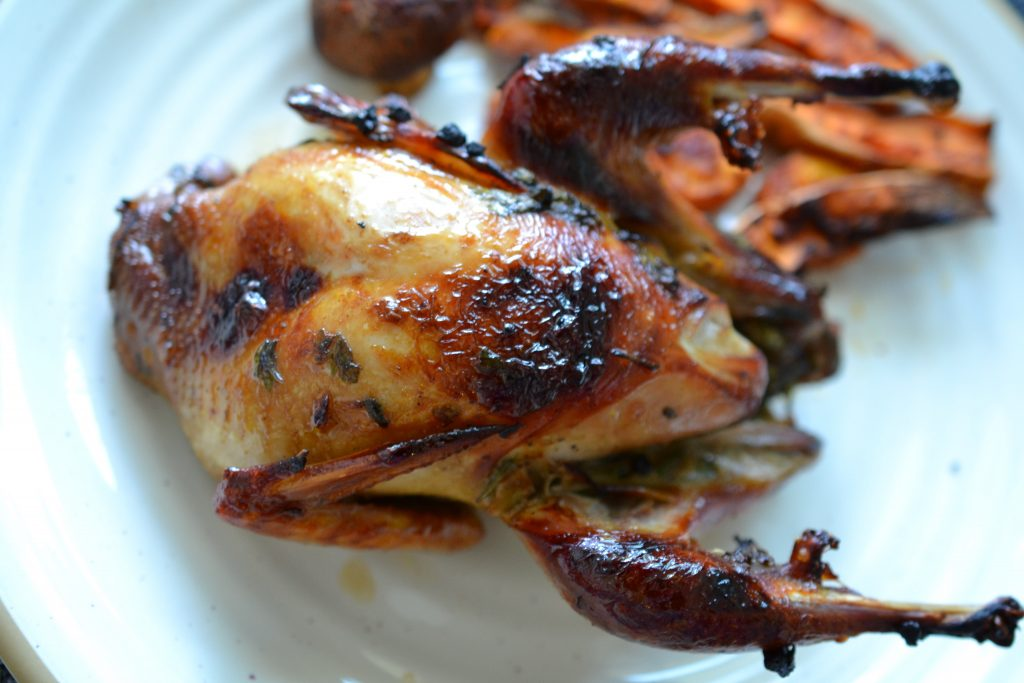 Roast partridge and vegetables