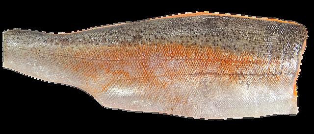 Trout Fillet
