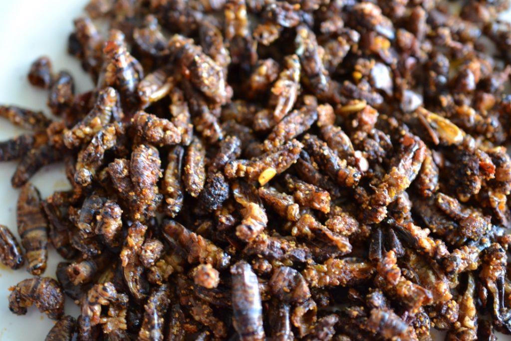Savoury, crunchy, spicy crickets.