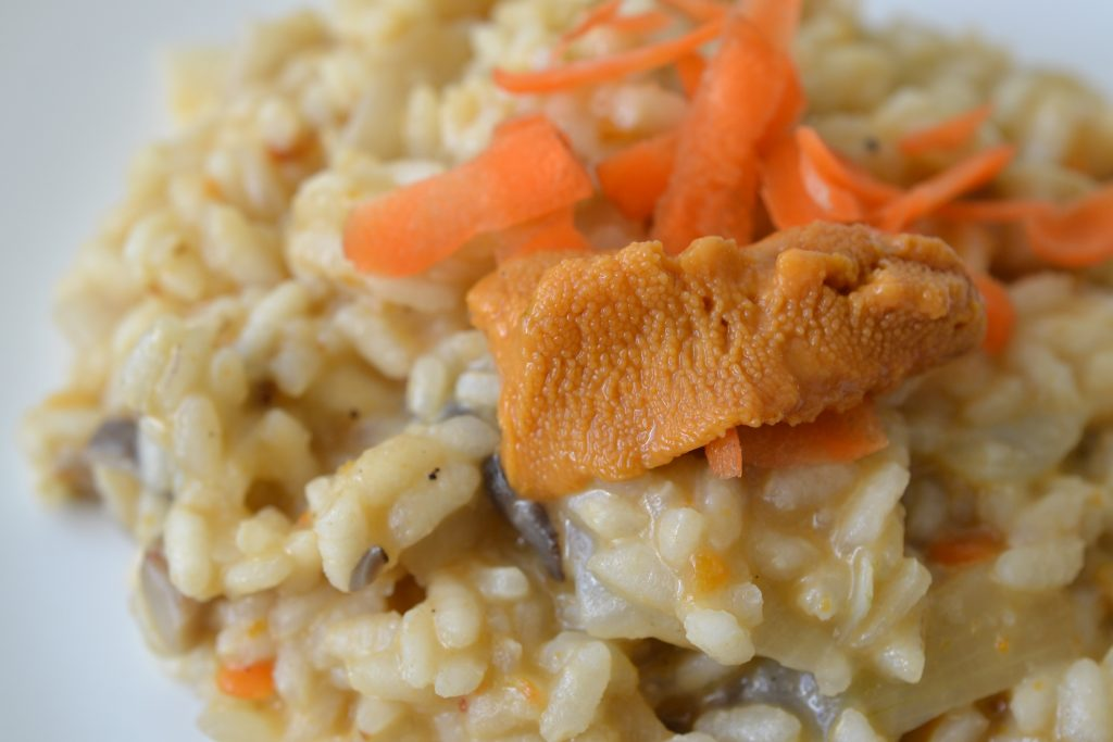 Sea Urchin Risotto close up on a plate.